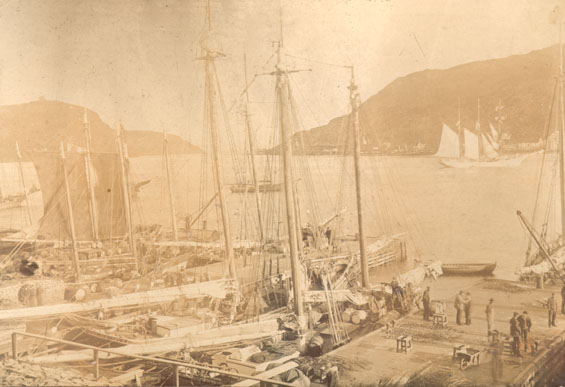 Job Brothers & Co. premises, north side, St. John's harbour looking towards Signal Hill