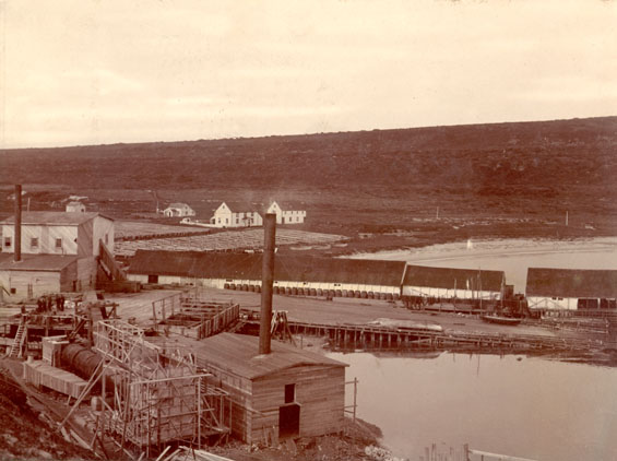 Job Brothers & Co., L'Anse au Loup whaling station, Labrador