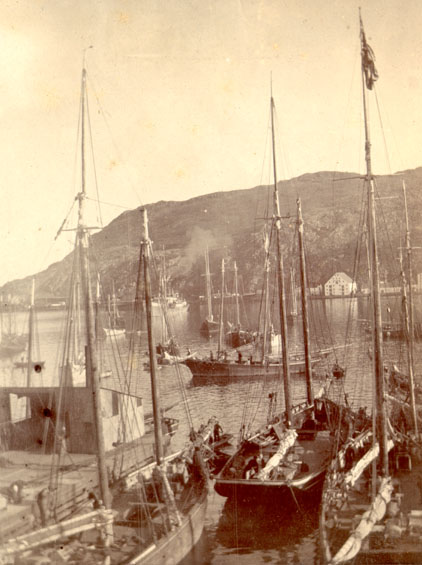 Job Brothers & Co. dock, north side, St. John's harbour