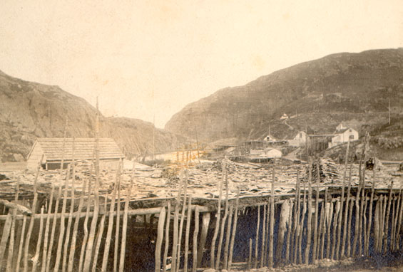 View of Quidi Vidi with fish flakes in the foreground