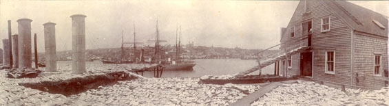 Panoramic view of St. John's harbour taken from Job Brothers & Co. south side premises, looking south