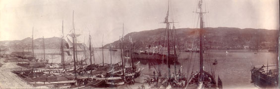 Panoramic view of St. John's harbour and the Narrows from Job Brothers & Co. north side premises