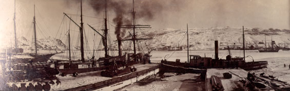 "S.S. ""Nimrod"" preparing for the seal fishery at Job Brothers & Co. dock, north side, St. John's harbour"