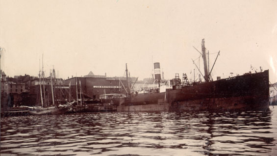 "S.S. ""Ramleh"" discharging salt, Job Brothers & Co. premises, north side, St. John's harbour"