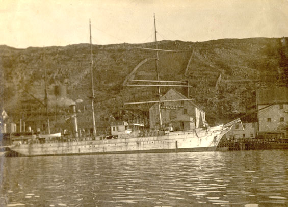 Unidentified vessel docked at Job Brothers & Co. premises, south side, St. John's harbour