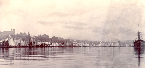 View of the north side of St. John's harbour taken from the west end, with schooners drying their sails on a calm day