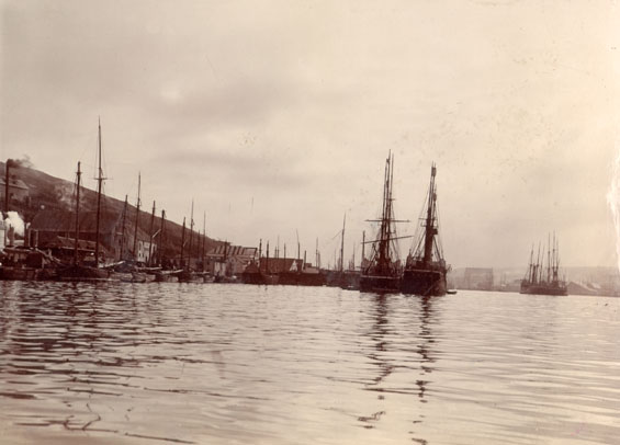 View of Job Brothers & Co. south side premises, St. John's with vessels in the harbour