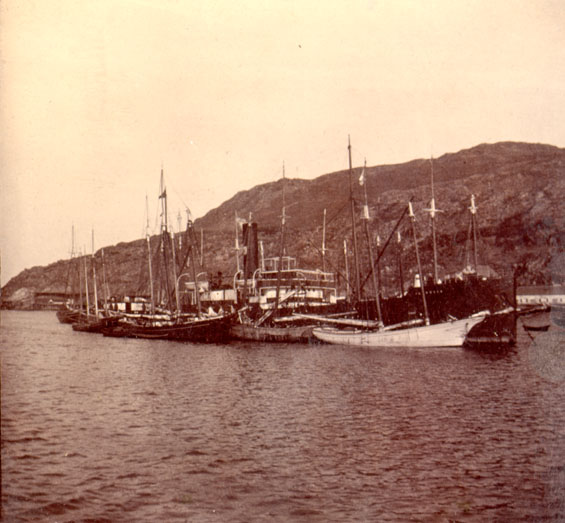 Unidentified vessels at Job Brothers & Co. premises, south side, St. John's harbour