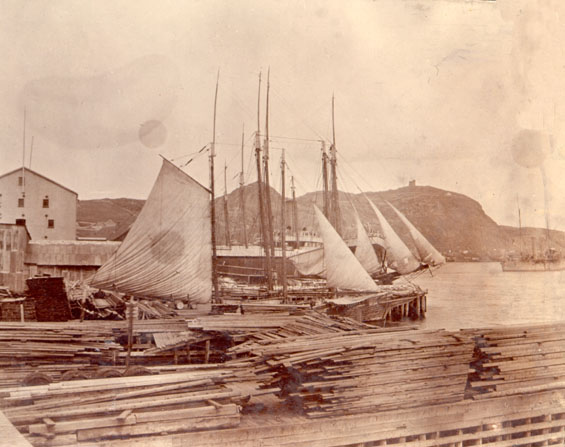 View from an office window at Job Brothers & Co. premises, north side, St. John's harbour with Signal Hill in the background