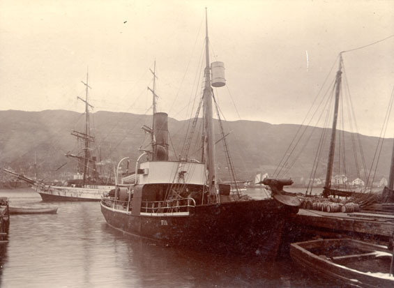 "Whaling steamer ""Fin"" on arrival from builders"