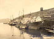 """Thetis"" and other vessels tied up at Job Brothers & Co. south side premises, St. John's harbour"
