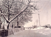 Winter, Waterford Bridge Rd., St. John's