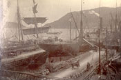 Vessels loading at Job Brothers & Co. premises, north side, St. John's harbour