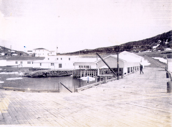 View of the government wharf, St. Lunaire, Great Northern Peninsula, Newfoundland