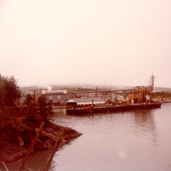 Fish plant at Fermeuse, Newfoundland