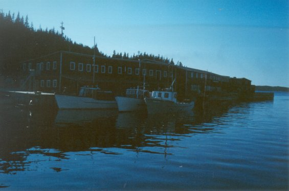 Fishing boats docked at the Canada Bay Cold Storage Company Ltd. facilities at Englee, Great Northern Peninsula, Newfoundland