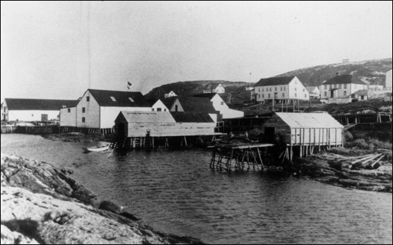 Bâtiments de la Baine, Johnson & Company, Battle Harbour
