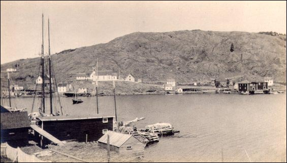Harbour at Exploits