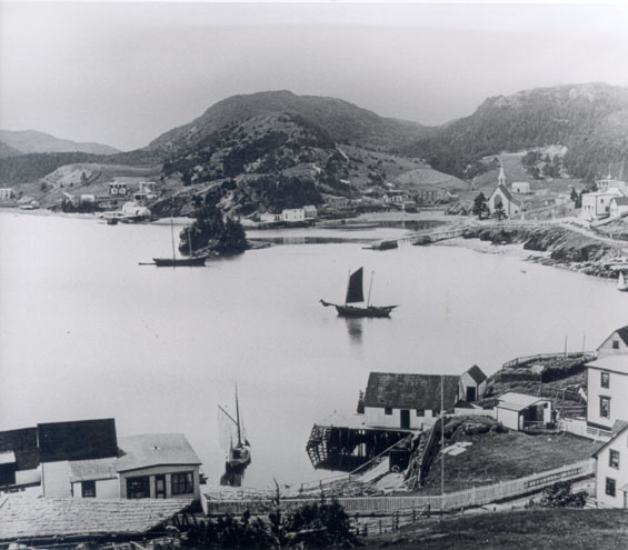 View of Harbour Buffett, Placentia Bay.