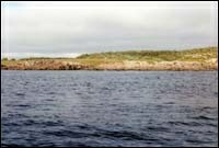 Off Cape Cove, near graveyard, 1990