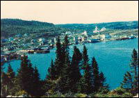 Deer Harbour