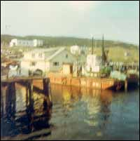 Leeland and Elsie Wareham's house on the barge at Harbour Buffett  ready  to move to Arnold's Cove, Placentia Bay.