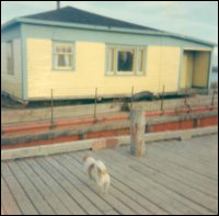Stanley Keeping house, Garnish, on the barge that moved it from Point Rosie, Fortune Bay